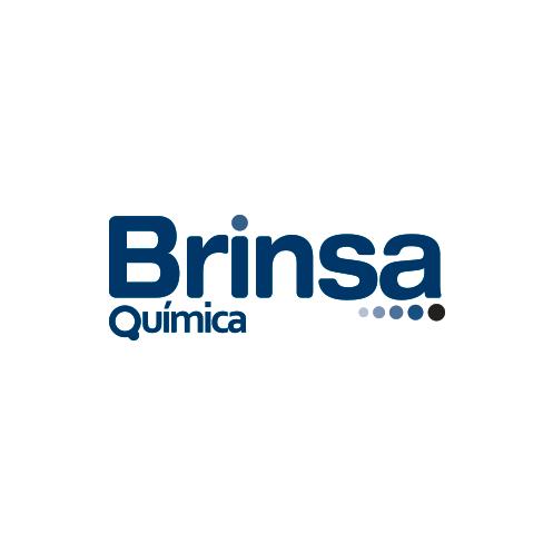 logo-brinsa2